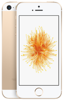 Apple iPhone SE - 16GB Gold - Locked
